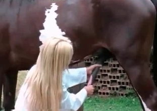 Sexy babe is pleasing a horse wildly