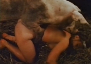 Fat mature woman is giving a handjob to this pig